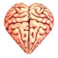 inteligencia-emocional-5-pilares-psicologo-online